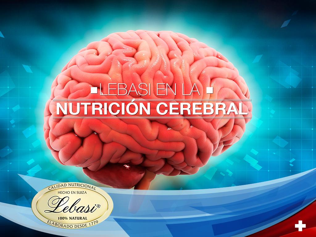 Nutrición Cerebral